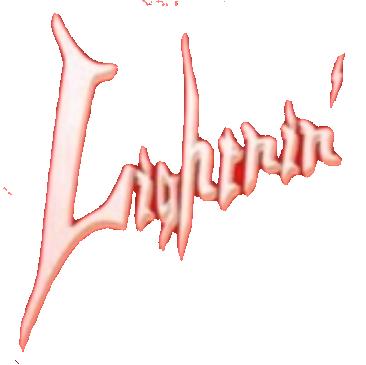 京町家のギターショップ ライトニン